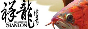 肇庆水族批发市场|肇庆水族馆|肇庆龙鱼